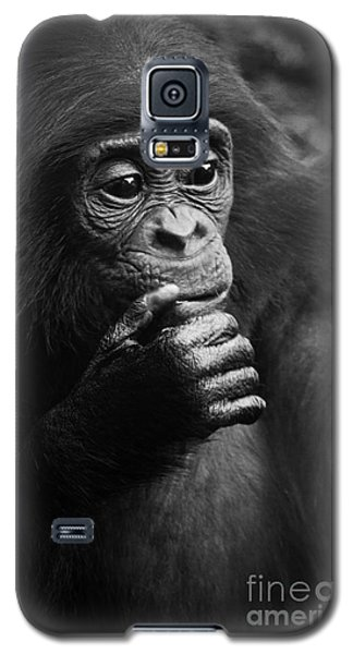 Galaxy S5 Case featuring the photograph Baby Bonobo by Helga Koehrer-Wagner