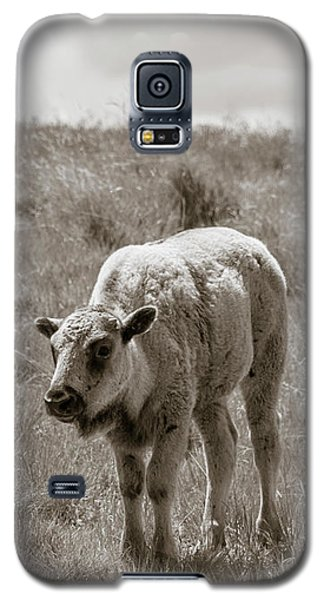 Galaxy S5 Case featuring the photograph Baby Buffalo In Field With Sky by Rebecca Margraf
