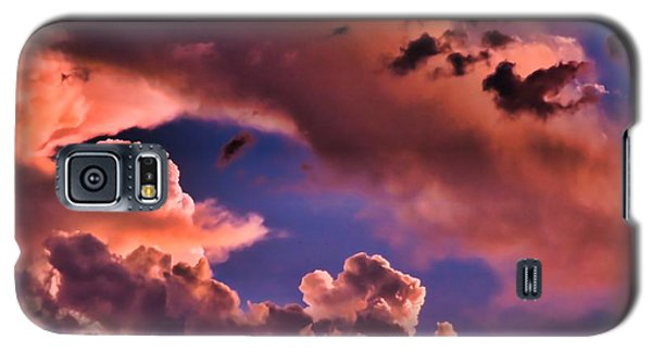 Baby Dragon's Fledgling Flight Galaxy S5 Case