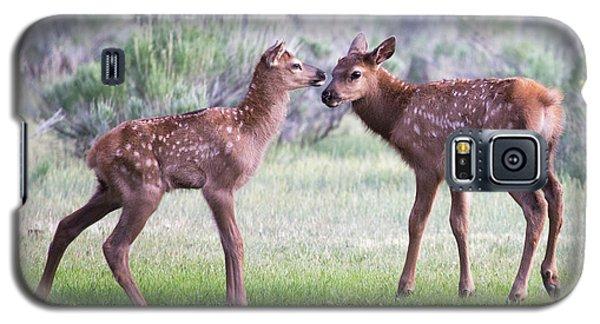 Baby Elk Galaxy S5 Case