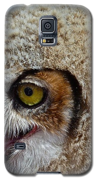 Baby Owl Galaxy S5 Case