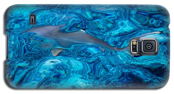 Baby Shark In The Turquoise Water. Production By Nature Galaxy S5 Case by Jenny Rainbow