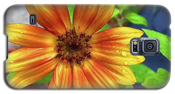 Baby Sunflower Grace Galaxy S5 Case