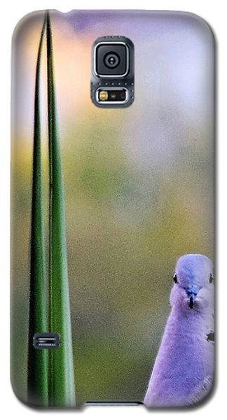 Back At Cha Galaxy S5 Case