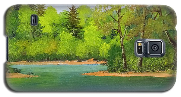 Galaxy S5 Case featuring the painting Back Country Pond by Frank Wilson