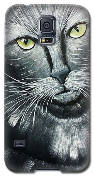 Cats Galaxy S5 Case by Edwin Alverio