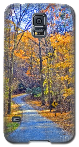 Galaxy S5 Case featuring the photograph Back Road Fall Foliage by David Zanzinger