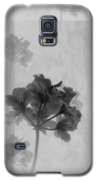 colour choice Romance Galaxy S5 Case