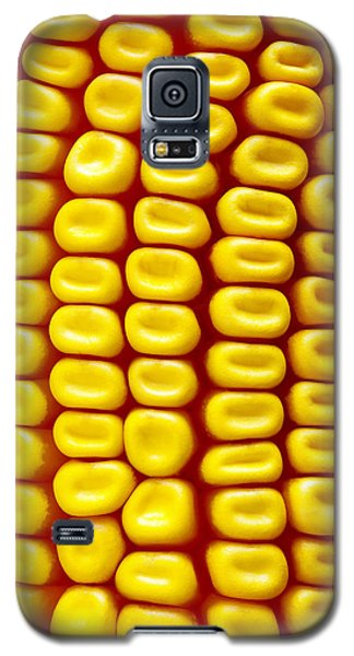 Background Corn Galaxy S5 Case