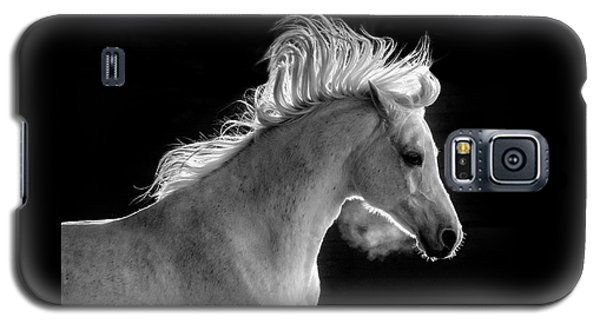 Backlit Arabian Galaxy S5 Case by Wes and Dotty Weber