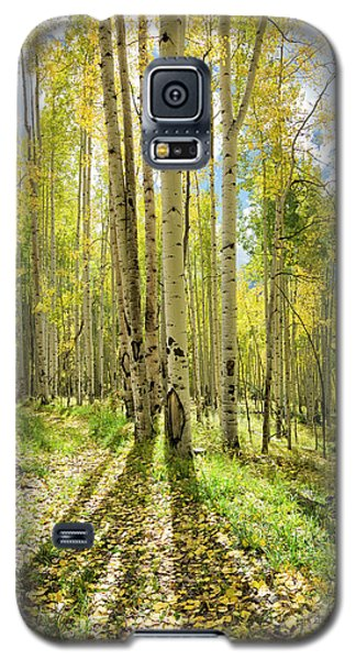 Backlit Aspen Trail Galaxy S5 Case