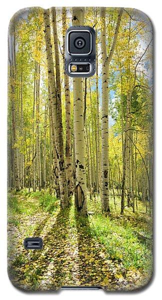 Backlit Aspen Trail Galaxy S5 Case