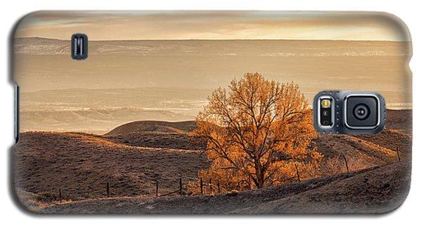 Backlit Cottonwood Galaxy S5 Case