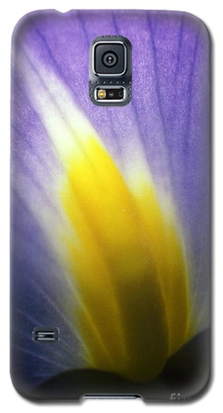 Backlit Iris Flower Petal Close Up Purple And Yellow Galaxy S5 Case