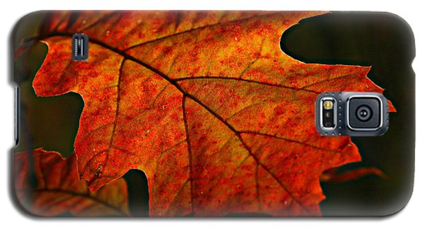 Backlit Leaf Galaxy S5 Case