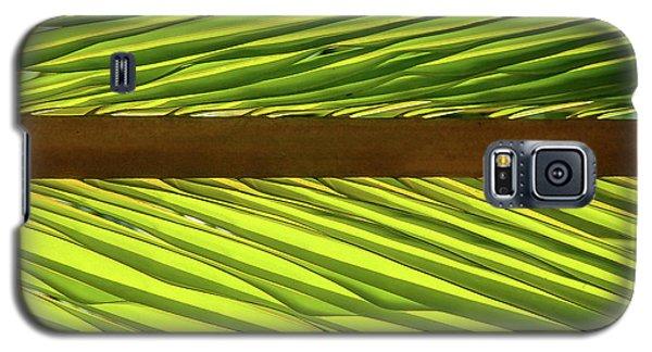 Palm West Galaxy S5 Case