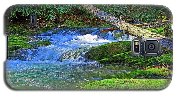 Backwoods Stream Galaxy S5 Case
