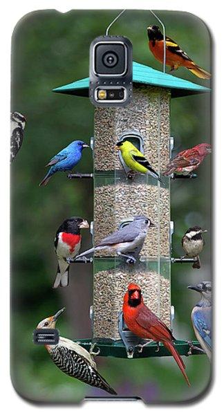 Backyard Bird Feeder Galaxy S5 Case