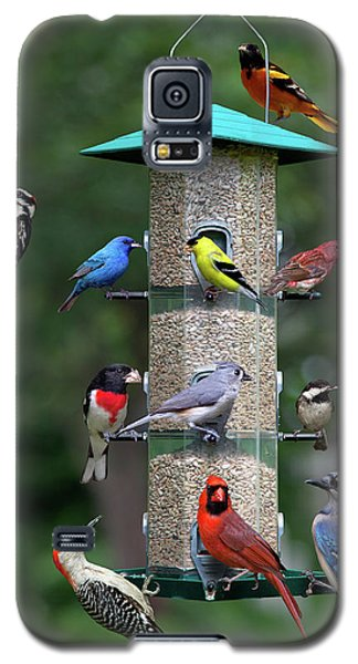 Backyard Bird Feeder Galaxy S5 Case