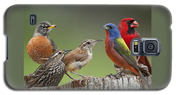Backyard Buddies Galaxy S5 Case