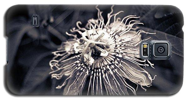 Clematis Flower Bloom Galaxy S5 Case