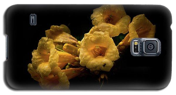 Backyard Flowers 63 Color Version Galaxy S5 Case
