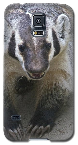 Badgered Badger Galaxy S5 Case by Sean Griffin