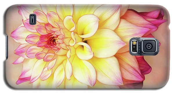 Galaxy S5 Case featuring the photograph Bahama Mama Dahlia Square by Mary Jo Allen