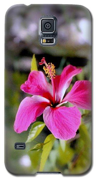 Bahamian Flower Galaxy S5 Case