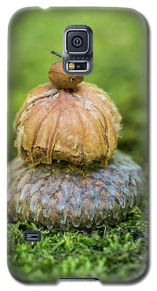Galaxy S5 Case featuring the photograph Balance With Nature by Dale Kincaid