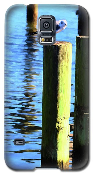 Galaxy S5 Case featuring the photograph Balanced by Jan Amiss Photography