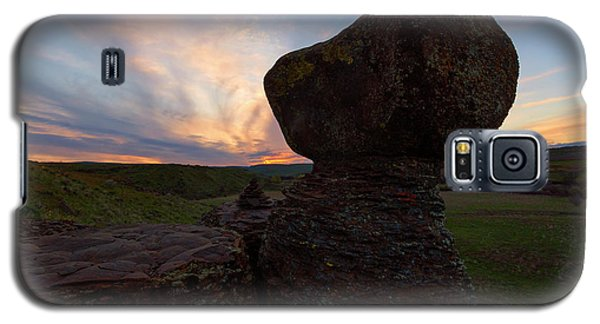Galaxy S5 Case featuring the photograph Balanced by Mike Dawson