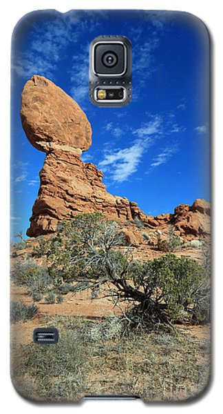 Balanced Rock And Desert Tree Galaxy S5 Case