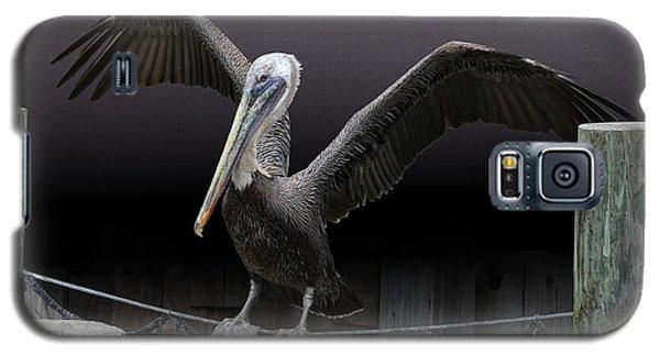 Balancing Act - Pelican Galaxy S5 Case