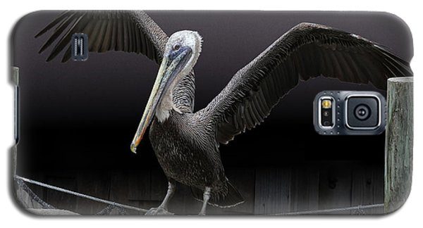 Balancing Act Galaxy S5 Case