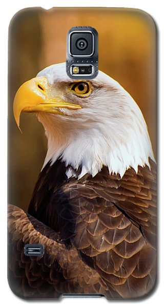 Bald Eagle 2 Galaxy S5 Case by Chris Flees