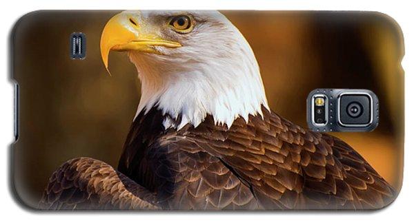 Bald Eagle 2 Galaxy S5 Case