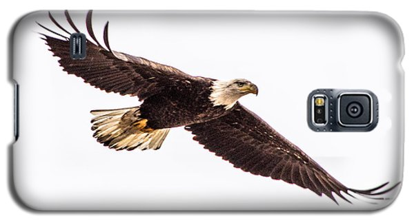 Bald Eagle 2 Galaxy S5 Case