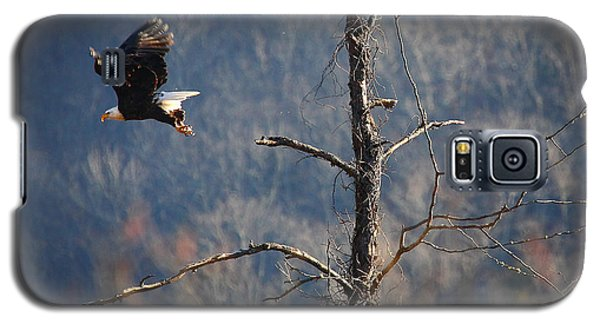 Bald Eagle At Boxley Mill Pond Galaxy S5 Case