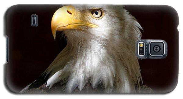 Bald Eagle Closeup Portrait Galaxy S5 Case