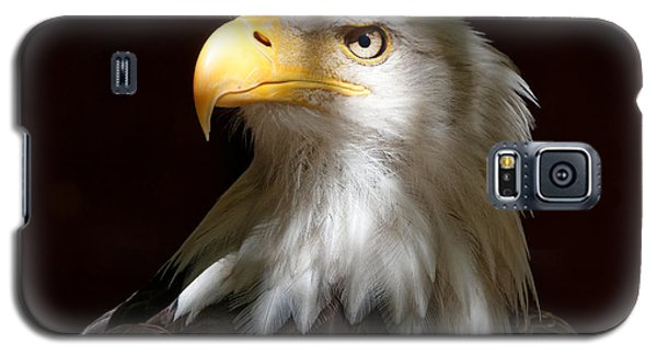 Bald Eagle Closeup Portrait Galaxy S5 Case