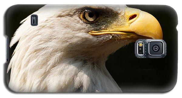 Bald Eagle Delight Galaxy S5 Case