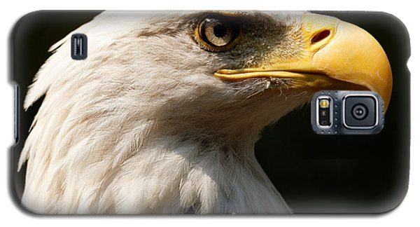 Bald Eagle Delight Galaxy S5 Case