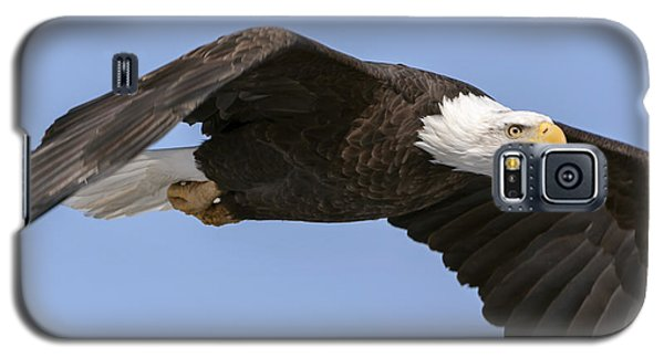 Bald Eagle Flight 2 Galaxy S5 Case