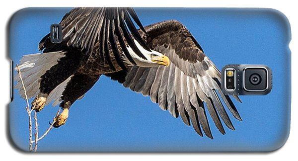 Bald Eagle Flight 3 Galaxy S5 Case
