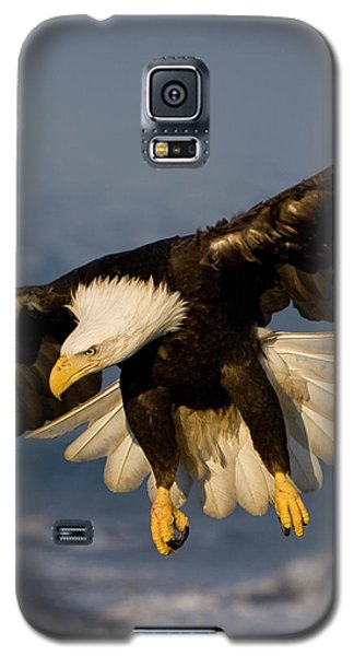 Bald Eagle In Action Galaxy S5 Case