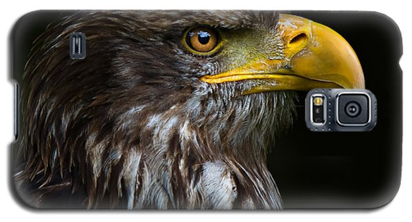 Galaxy S5 Case featuring the photograph Bald Eagle by Joerg Lingnau