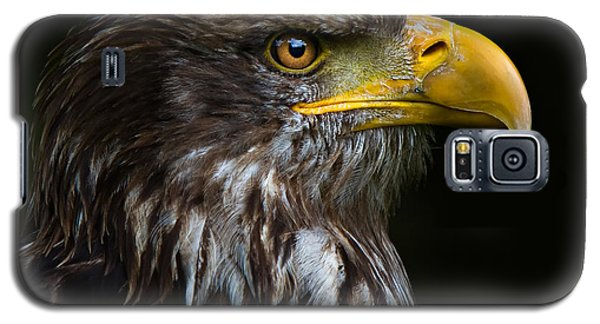 Bald Eagle Galaxy S5 Case by Joerg Lingnau