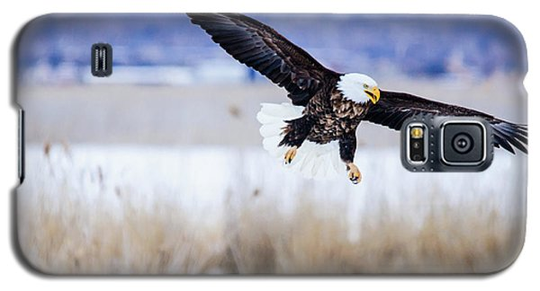 Bald Eagle Landing Galaxy S5 Case