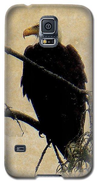 Galaxy S5 Case featuring the photograph Bald Eagle by Lori Seaman